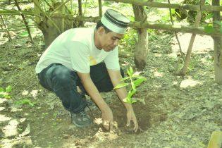 MENANAM. Chalid Muhammad menanam Pohon Bitti (Vitex cofassus) di Rumah Hijau Denassa (RHD)