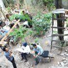 DISKUSI di Bawah Pohon Asam (Tamarin Indicus) di Rumah Hijau Denassa (RHD).
