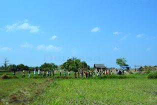 OUTING CLASS. Rumah Hijau Denassa (RHD) belajar bersama di sawah