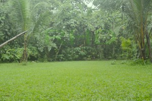 Pelataran Mappasomba di Rumah Hijau Denassa (RHD).