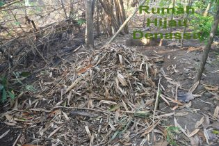 RHD. Daun yang siap dilapukkan di Kawasan Konservasi Lingkungan Rumah Hijau Denassa (RHD)