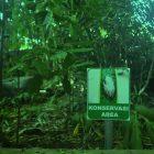 RHD. Kawasan Konservasi di Rumah Hijau Denassa (RHD) dengan icon Katak Pohon Coklat (Polypedates leucomystax)