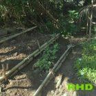 RHD. Lahan Kebun Dibuat Sengkedang