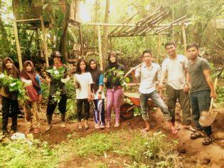 RHD. Pembenahan Kebun di Rumah Hijau Denassa (23.10.2016)