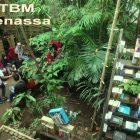 RHD. Suasana di Taman Bacaan Masyarakat (TBM) Denassa dalam Kawasan Rumah Hijau Denassa (RHD) yang Merupakan Sekretariat Kampung Literasi Borongtala, Gowa, Sulsel