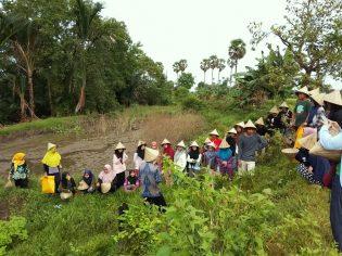 RHD. Mahasiswa Departemen Sastra Indonesia belajar Bersama Darmawan Denassa Mengenali Kultur Tanaman (25.03.2018)
