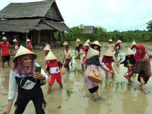 http://rumahhijaudenassa.org/wp-content/uploads/2019/02/RHD.-Guru-dan-Peserta-Didik-dari-Gugus-Sekolah-Calon-Adiwiyata-Mandiri-Makassar-Peringati-Hari-Lahan-Basah-dengan-Tanam-Padi-di-Rumah-Hijau-Denassa-02.02.2019.jpg